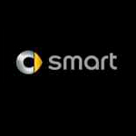 20_smart